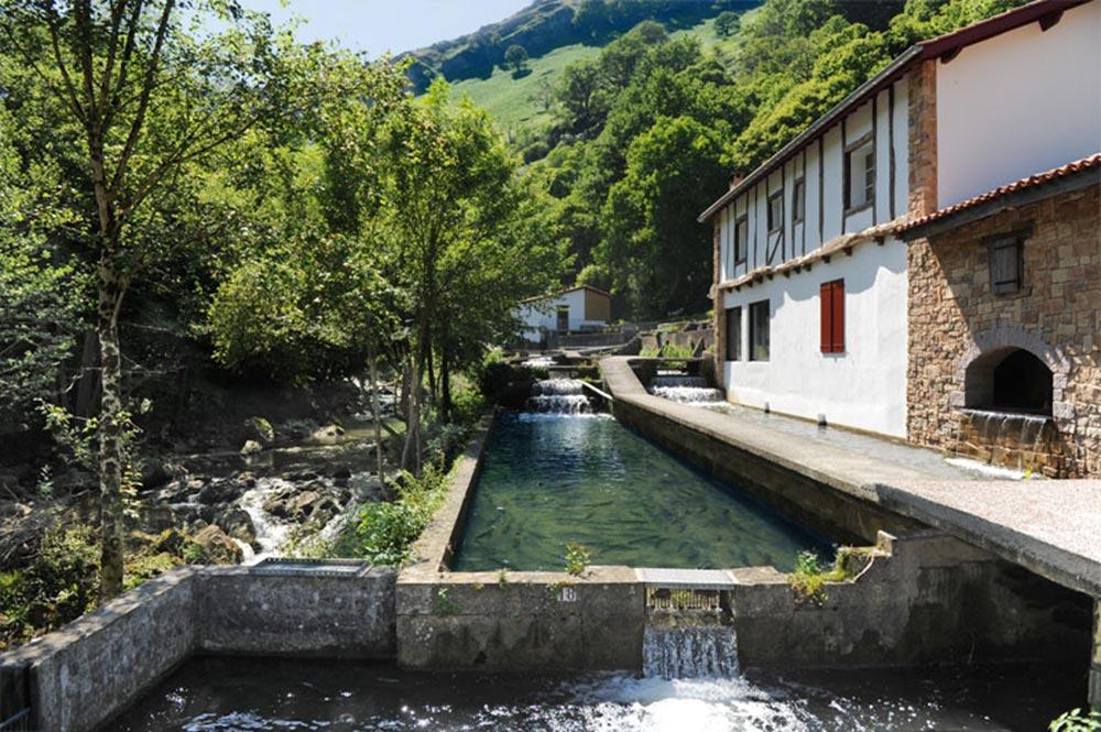 Ferme De Banka Elevage Truite Pays Basque